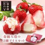 お花のようないちごアイス&苺アイス