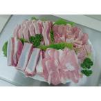 焼肉 メガ盛 豚・鶏バーベキューセット(10人前)