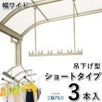 竿掛け 吊り下げ式竿掛け 物干し金物 SATW-01-3S ワイドサイズ ショートタイプ 3本入 三協立山アルミ テラス用