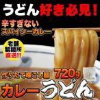 食品 うどん カレーうどん 辛すぎないスパイシーなカレーうどん4食(180g×4) 讃岐うどん 麺類 さぬきうどん 辛すぎない