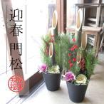 迎春門松 80cm 1対セット 送料無料 薫る花 お歳暮 お正月 年末年始 年越し特集 玄関 販売 天然 造花 一対 0.8m 7号鉢サイズ 寄せ植え アレンジメント 大型