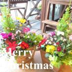 クリスマスのおまかせ寄せ植え(スクエアウッドボックス鉢植え) 花 フラワー プレゼント ギフト お誕生日 開店祝い お祝い お歳暮 御歳暮 玄関 冬 セット