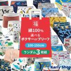【3枚組】選べるボクサーパンツ ブリーフパンツ 男児 福袋 100cm〜160cm b001