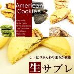 送料無料 選べるアメリカンクッキー&生サブレ20枚セット 約700g相当 母の日 父の日 お菓子 個包装 福袋