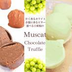 送料無料 選べるビターorホワイトチョコレートのマスカットトリュフ8個ギフト 2箱セット 生チョコ ボンボンショコラ お歳暮 クリスマス