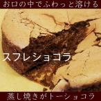 キャラメルプラリネザッハトルテ15cm  父の日 father's day  ギフト チョコレートケーキ