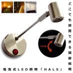 スポットライト 照明 ハルス 配線不要 LEDライト ロングTYPE ショーケース 電池式 角度調節可能 昼白色 電球色 インテリア おしゃれ 人気 KZ-HALS 予約