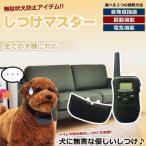 犬用 無駄吠え禁止 しつけマスター 3モード 電気 振動 遠隔操作 しつけ ムダ吠え 2台まで操作可能 KZ-SITUMASU 即納