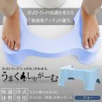 トイレ用 踏み台 サポート ブルー 洋式 和式 しゃがむ 座る 体勢 踏み 台 便所 お手洗い マンション しゃがみ込む FUMIFUMI-BL