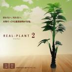 観葉植物 造花 新型リアルプラント大型 人工 部屋 リアル 会社 緑 おしゃれ インテリア フェイクグリーン KZ-MI-PIKOKU-175-E12 即納