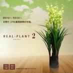 観葉植物 造花 新型リアルプラント大型 人工 部屋 リアル 会社 緑 おしゃれ インテリア フェイクグリーン KZ-MI-DAN-130-E8  予約
