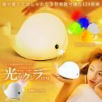 くじら17号 ベッドサイド 照明 ランプ 可愛い イルカ USB充電 5色 寝室 子供  インテリアライト  おもちゃ KZ-KUZISHOME 予約