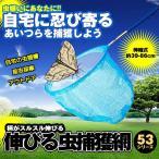 伸びる 虫捕獲網 ブルー 柄 伸びる 伸縮式 長さ 約39-86cm 軽量 コンパクト 魚取り 虫取りあみ 虫取りアミ 虫とり NOBIMUSIHOKAの画像