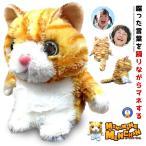 ものまね みいちゃん  踊りながら 声真似する ぬいぐるみ 猫  声の大きさも真似 おもしろグッズ プレゼント 景品 クリスマス 子供 MIMIC-CAT 即納