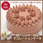 卵アレルギー対応デコレーションケーキ チョコレート(冷凍配送)(誕生日/お祝い/クリスマス) 【RCP】