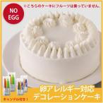 クリスマス ケーキ 2020 【アレルギー対応】卵アレルギー対応 デコレーションケーキ