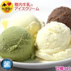 アイスクリーム 稚内牛乳 ノンホモ お取り寄せ お中元 ギフト あいすくりーむ ジェラート アイス 12個 セット