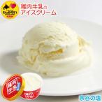 アイスクリーム 塩 稚内牛乳 ノンホモ 無添加 アイス 宗谷の塩 1個