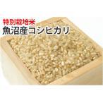 特別栽培米・魚沼産コシヒカリ【玄米】1kg