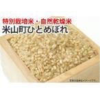 特別栽培米・自然乾燥米・登米市産ひとめぼれ【玄米】1kg