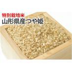 特別栽培米・つや姫【玄米】1kg