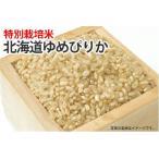 高度クリーン米・北海道ゆめぴりか【玄米】1kg