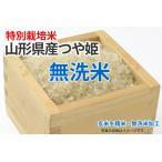 令和2年産新米・特別栽培米・つや姫【玄米1kgを精米・無洗米加工】