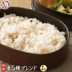 米 雑穀 麦 国産 麦5種ブレンド(丸麦/胚芽押麦/はだか麦/もち麦/はと麦) 1kg(500g x2袋) 送料無料 雑穀米本舗