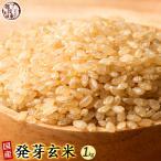 米 雑穀 発芽玄米 国産 発芽玄米 1kg(500g x2袋) 送料無料 雑穀米本舗