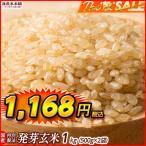 米 雑穀 発芽玄米 国産 発芽玄米 1kg(500g x2袋) 送料無料 セール品