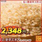 米 雑穀 発芽玄米 国産 発芽玄米 2kg(500g x4袋) 送料無料 セール品