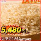 絶品 最高級 国産 発芽玄米 5kg(500g x10袋) 業務用サイズ 厳選国産 送料無料 ポスト投函