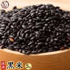 米 雑穀 雑穀米 国産 黒米(中粒) 5kg(500g x10袋) 送料無料 厳選 もち黒米 週末セール
