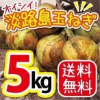 送料無料 農園直送 淡路島玉ねぎ たまねぎ タマネギ5kg