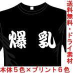 漢字おもしろTシャツTシャツ(カラー5色) 爆乳Tシャツ ユニークなメッセージてぃしゃつ 送料無料 河内國製作所