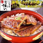 (訳あり わけあり)国産うなぎの蒲焼きカットミニ 1kgセット(うなぎ 鰻  ウナギ)