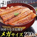 超特大 国産 うなぎ 蒲焼き メガサイズ 230g-249g ×1本 ウナギ 鰻 ギフト