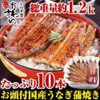 (限定90セット)国産有頭うなぎ蒲焼き10本セット(送料無料)