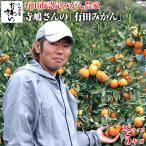 有田市認定みかん農家 寺嶋さんの有田みかん 2Sサイズ 5キロ 有田みかん 和歌山 ミカン