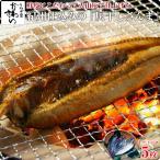 西出水産 灰干し さんま 5枚セット 北海道産 冷凍 サンマ 秋刀魚 干物