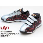 ハタケヤマ 野球 トレーニングシューズ 限定カラー KT-TR18-BR ブラック×レッド×シルバー