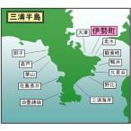 マイ海図 東京湾 伊勢町海岸11枚組