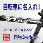 自転車 名入れ ステッカー シール 作成 オリジナル 名前 ラベル オーダー メイド バイク 外装パーツ 3枚セット 防水 製作