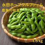 おつまみ 旬 豆 鹿角の枝豆1.5kg(永田ホープフルファーム)