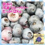 【送料込】【国産・農薬不使用】訳あり冷凍ブルーベリー 【たっぷり2kg】スムージーにピッタリ!