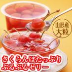 (お歳暮 御歳暮 ギフト)さくらんぼたっぷりぷるぷるゼリーセット(240g×8個入) (山形 お土産 お菓子)