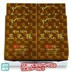 平田牧場ギフト 平牧三元豚コラーゲン入り特製カレーセット(VCR18-1) (お歳暮 御歳暮 ギフト)