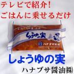 しょうゆの実 ハナブサ醤油(株) (山形 お土産)