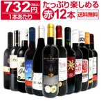 赤ワイン セット イタリア スペイン フランス ボルドー メルロー 12本 wine set 750ml 第23弾 1本あたり732円 税込 採算度外視の大感謝 厳選