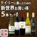 ワインセット 赤白セット 新世界満喫セット第6弾 とにかくコスパの高いワインを集めたスタッフ厳選5本セット set wine